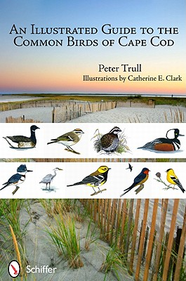 An Illustrated Guide to the Common Birds of Cape Cod By Trull, Peter/ Clark, Catherine E. (ILT)